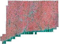 Coverage area of 2012 NAIP Color Infrared Orthophotography