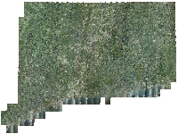 Coverage area of 2012 NAIP Color Orthophotography